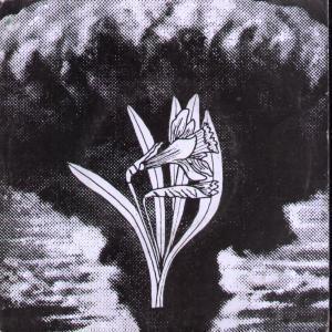 Image result for betsan lloyd   y diwedd