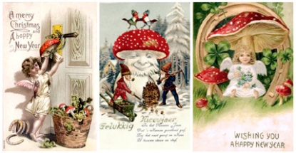 Santa Claus the Magic Mushroom & the Psychedelic Origins of