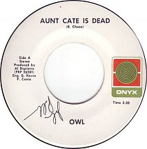 owl-aunt-cate-is-dead-onyx-methuen-massachusetts-s.jpg